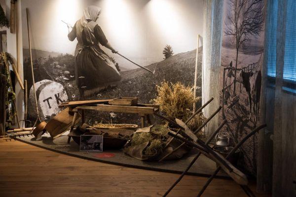 muzeum-468306A8A-D8CE-C7FC-562A-214FCDBA97B8.jpg